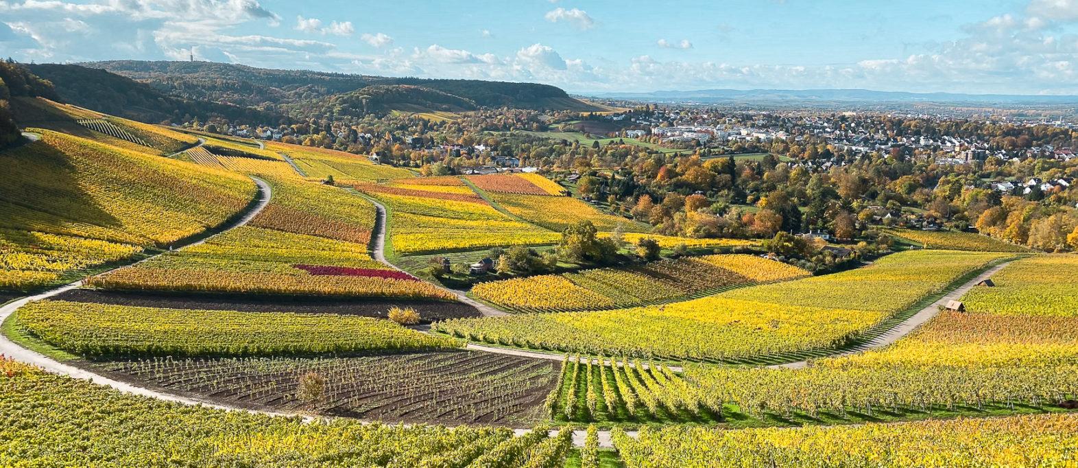 Ausflugsziele rund um Heilbronn: 33 Tipps für Wanderungen, Ausflüge und Aktivitäten in der Region