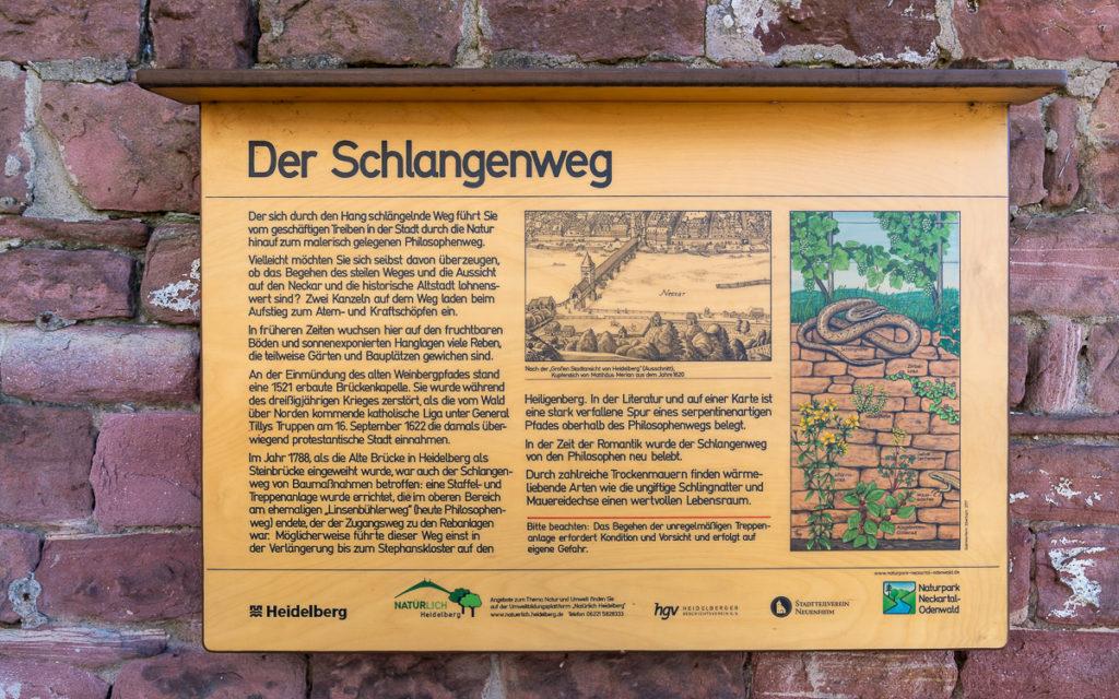 Top-Sehenswürdigkeiten in Heidelberg: Meine persönlichen Highlights 6