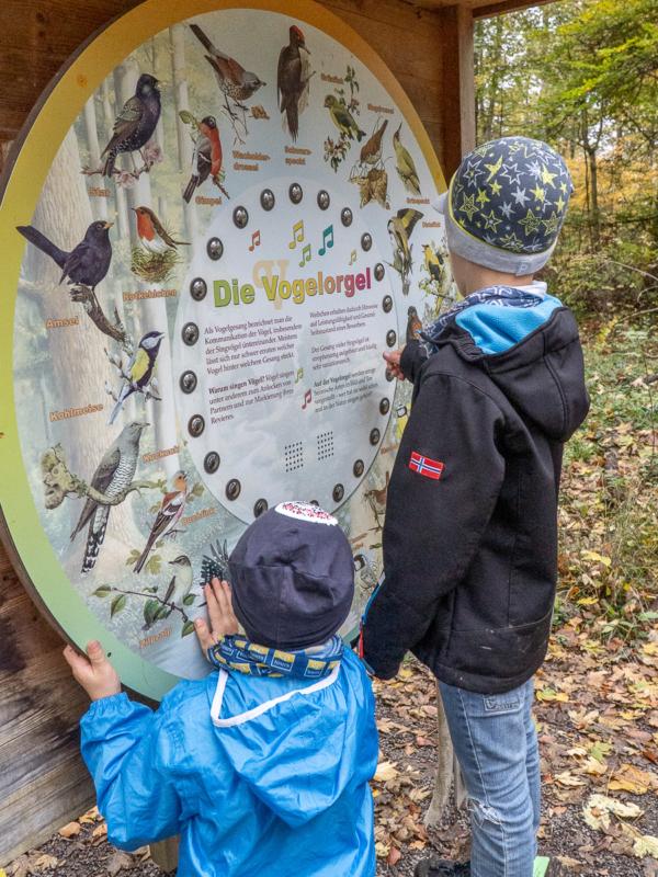 Ausflugsziele rund um Heilbronn: 33 Tipps für Wanderungen, Ausflüge und Aktivitäten in der Region 5