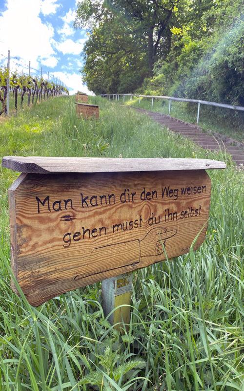 Ausflugsziele rund um Heilbronn: 33 Tipps für Wanderungen, Ausflüge und Aktivitäten in der Region 11