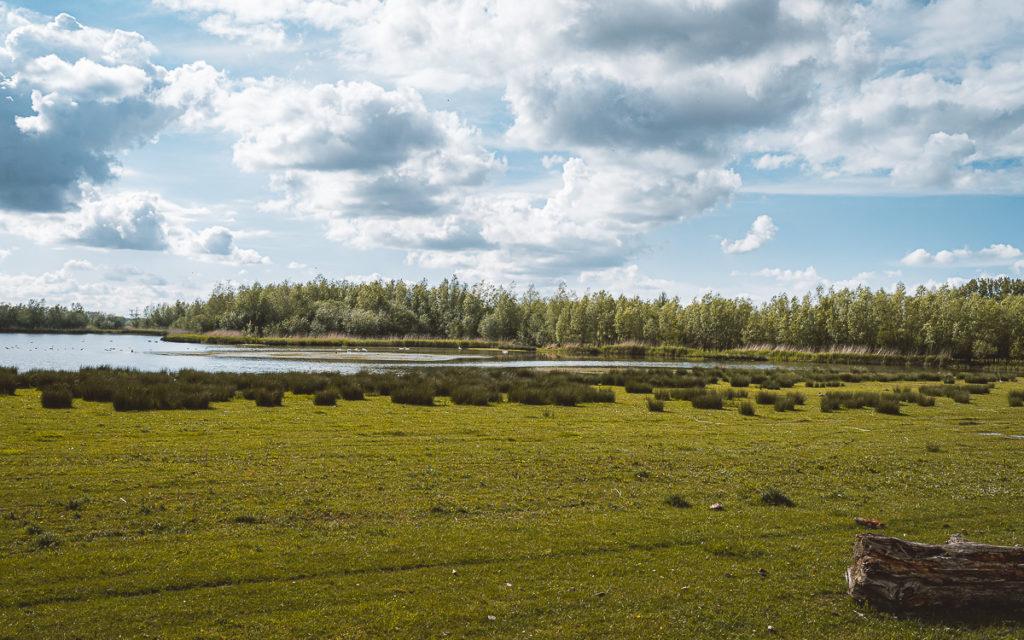 Roadtrip in Nordbrabant: Ein Mix aus Natur, Outdoor-Aktivitäten und idyllischen Städten 35
