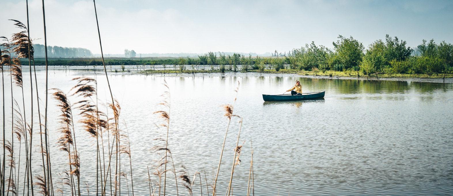Sehenswürdigkeiten Nordbrabant Holland De Biesbosch Nationalpark