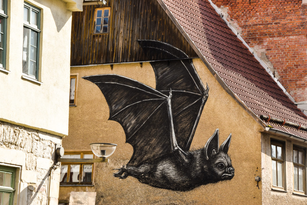 ROA Street Art Schmalkalden