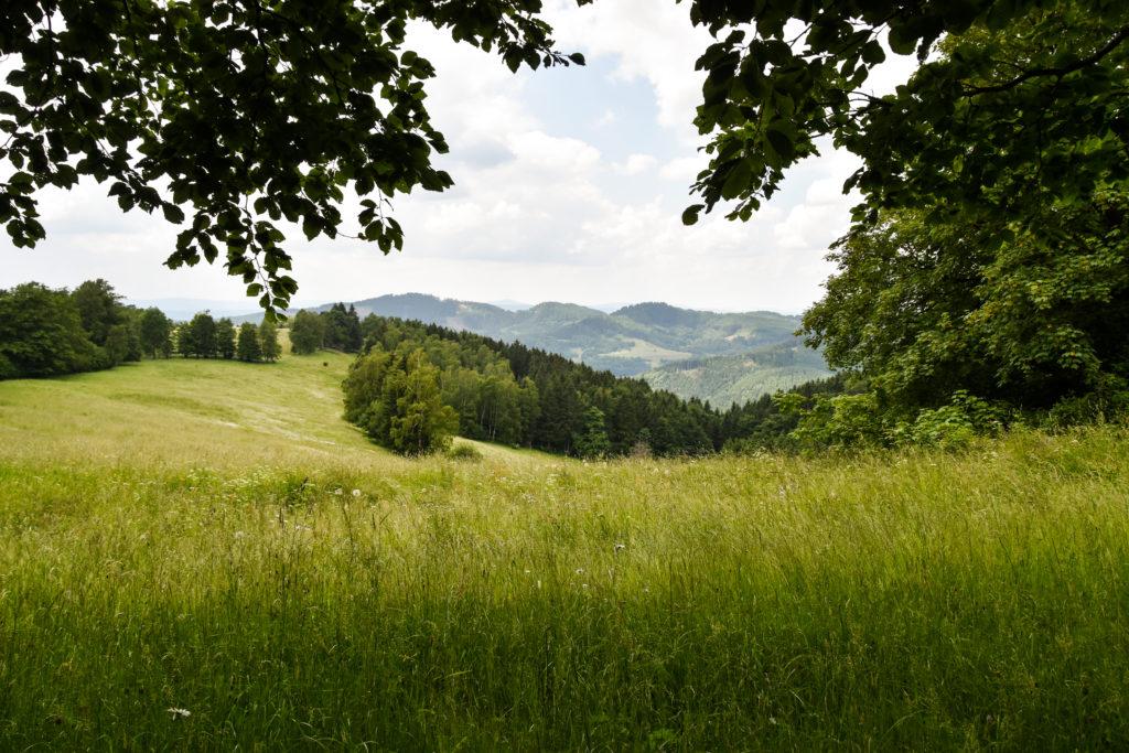 Thüringens schöner Südwesten: Die Region Schmalkalden-Meiningen 39