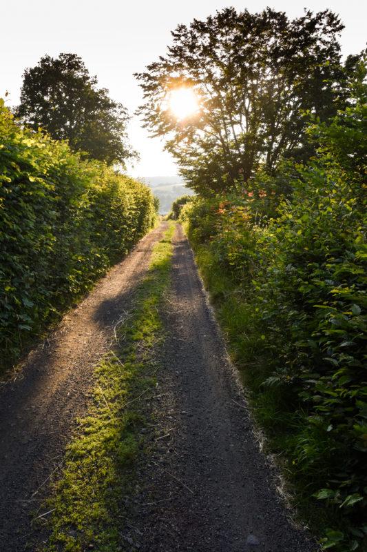 Thüringens schöner Südwesten: Die Region Schmalkalden-Meiningen 50
