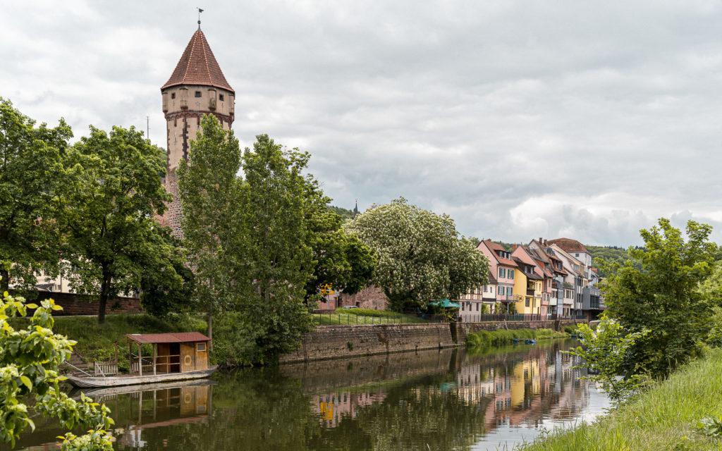 Liebliches Taubertal: Die Highlights meines Roadtrips im Norden von Baden-Württemberg 47