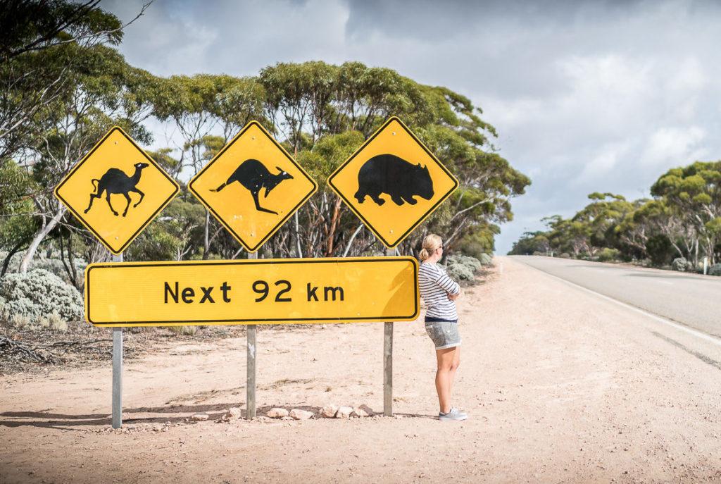Nullarbor Auto Fahren Australien