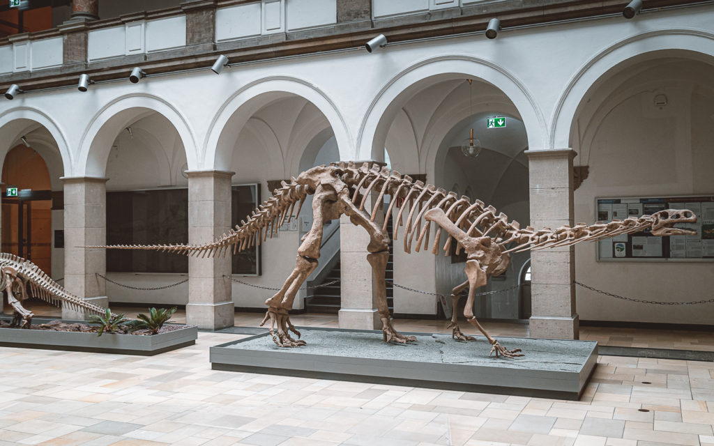 Geheimtipp München: 11 alternative Sehenswürdigkeiten für dein nächstes urbanes Abenteuer 32