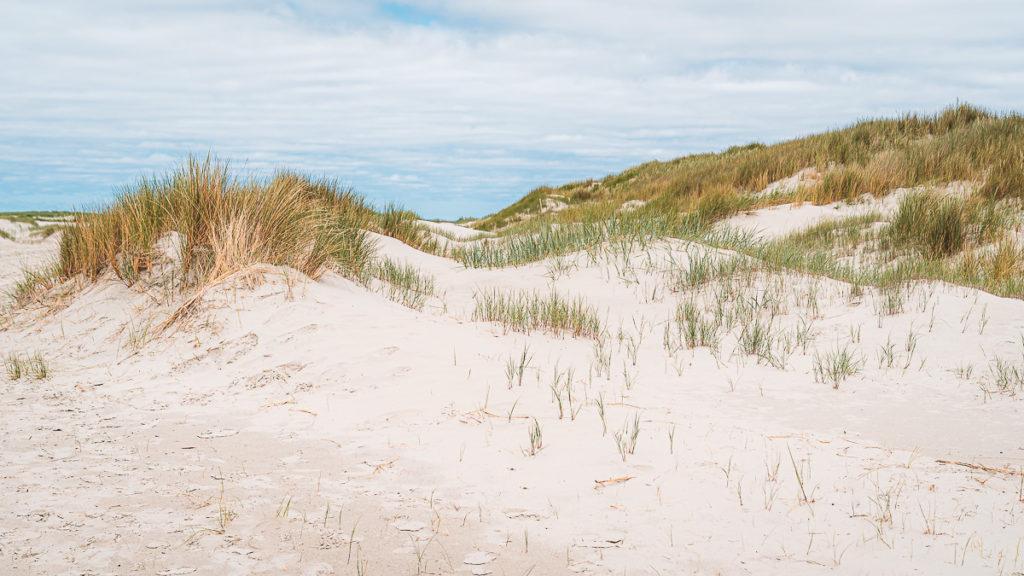Kleine Nordseeinsel Juist: Wo Ostfriesland am schönsten ist 7
