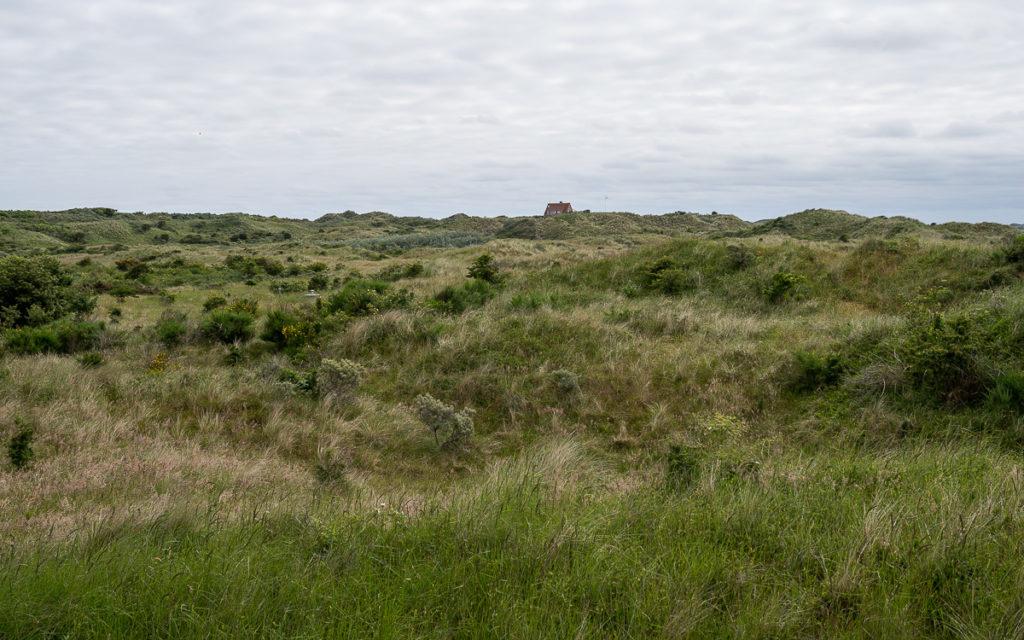 Kleine Nordseeinsel Juist: Wo Ostfriesland am schönsten ist 5