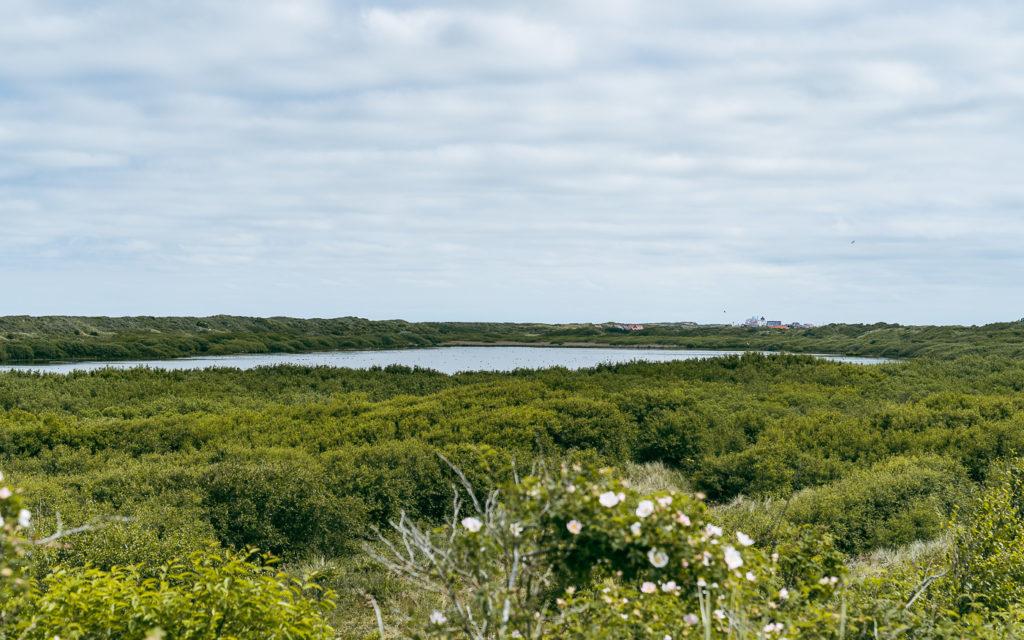 Hammersee auf der Insel Juist
