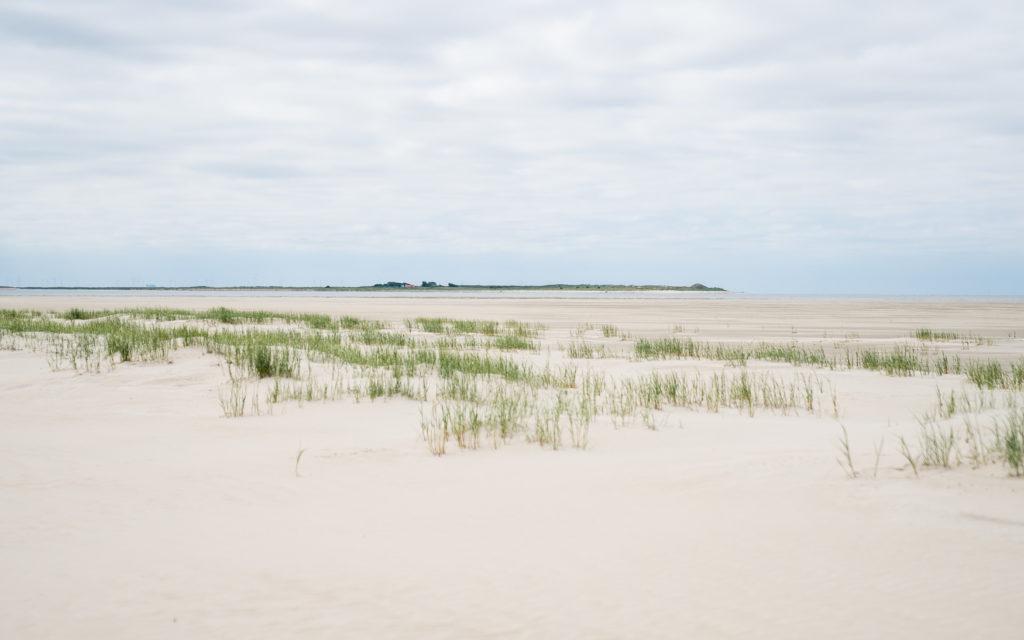 Vogelinsel Memmert vom Billriff auf Juist aus