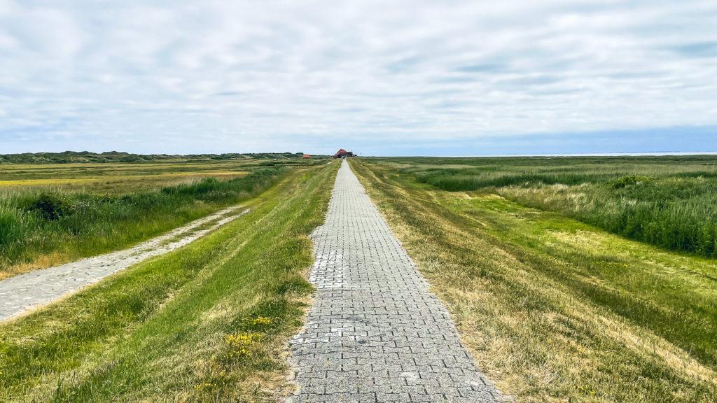 Kleine Nordseeinsel Juist: Wo Ostfriesland am schönsten ist 12